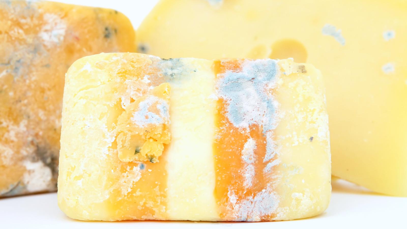 Käse mit unerwünschtem Schimmel